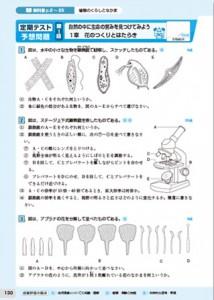 教科書トレーニングの問題例